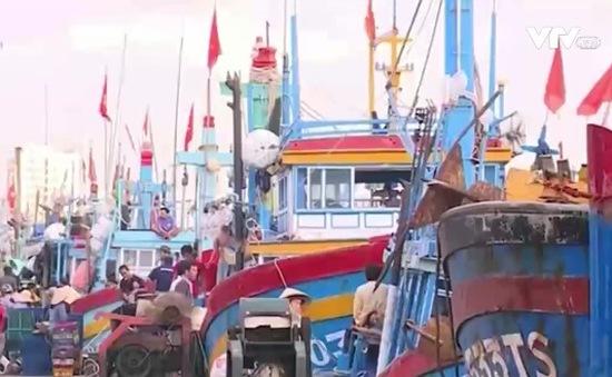 Phú Yên: Tàu cá đóng mới theo Nghị định 67 hoạt động có lãi