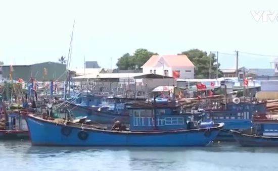 Quảng Ngãi thiếu nơi neo đậu tàu thuyền tránh trú bão