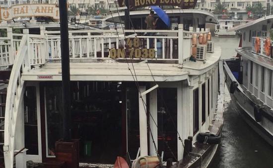 Đình chỉ tàu du lịch Hạ Long bị tố ép giá du khách Việt kiều