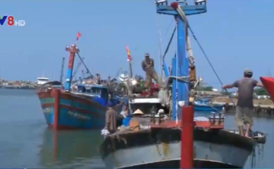 Quảng Ngãi: Cấp giấy phép sử dụng tần số vô tuyến điện cho tàu cá