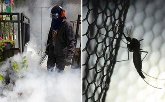 Thái Lan ghi nhận 200 ca nhiễm virus Zika