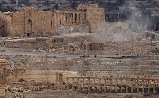Mỹ lo ngại nhiều vũ khí quan trọng ở Palmyra rơi vào tay IS