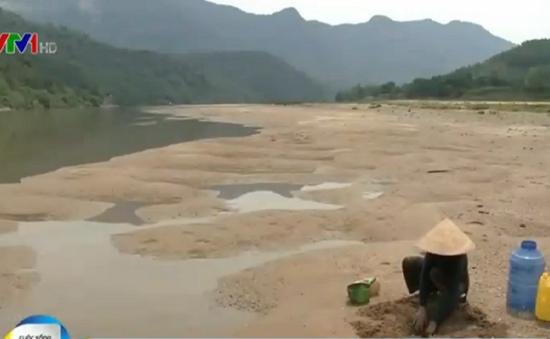 Thiếu nước, người dân Quảng Nam sử dụng nước nhiễm Xyanua