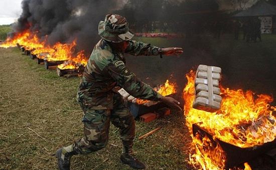 Campuchia thiêu hủy gần 1,6 tấn ma túy