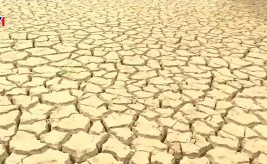 Sơn La: Người dân trước nguy cơ mất mùa do thiếu nước