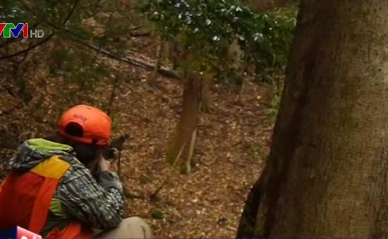 Xu hướng phụ nữ làm thợ săn tại Nhật Bản