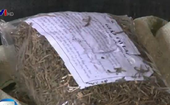 Thu giữ hơn 800 kg thuốc Bắc không rõ nguồn gốc tại Hà Nội