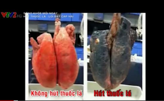 Hơn 7.000 chất hóa học độc hại trong khói thuốc lá