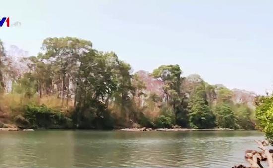 Cảnh báo xây thủy điện trong vùng lõi Vườn Quốc gia Yok Đôn