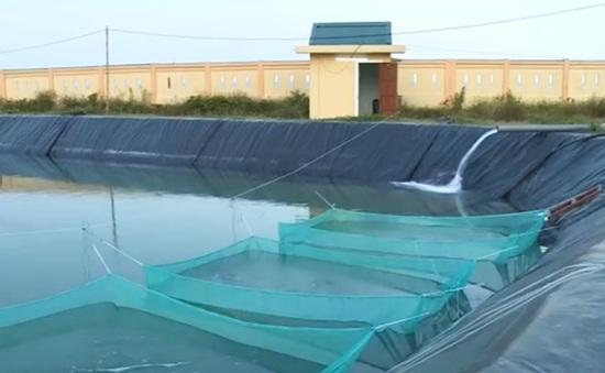 Quảng Nam: Tăng cường đầu tư công trình thủy lợi