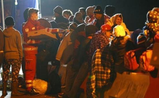 Đức sẽ cấm chế độ đa thê ở người di cư xin tị nạn