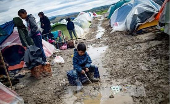 Gia tăng bạo lực ở các trại tị nạn tại Hy Lạp