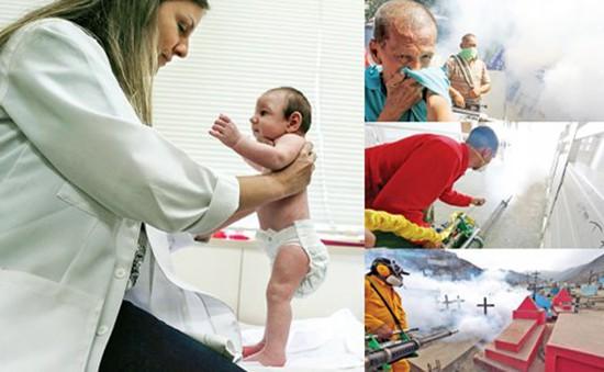 WHO cảnh báo khủng hoảng y tế công cộng do bệnh Zika
