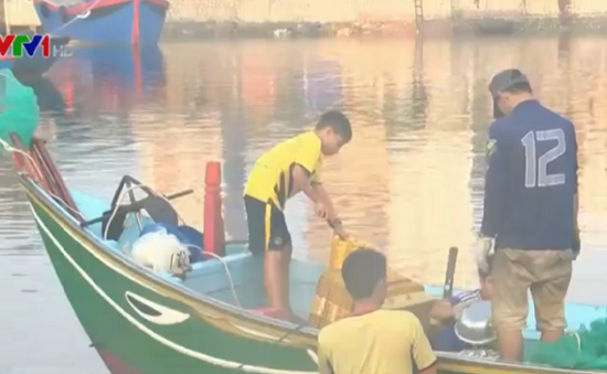 Trẻ em vùng biển bỏ học ra khơi
