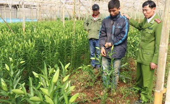 Hà Nội: Trộm cắp vùng nông thôn ngày càng táo tợn