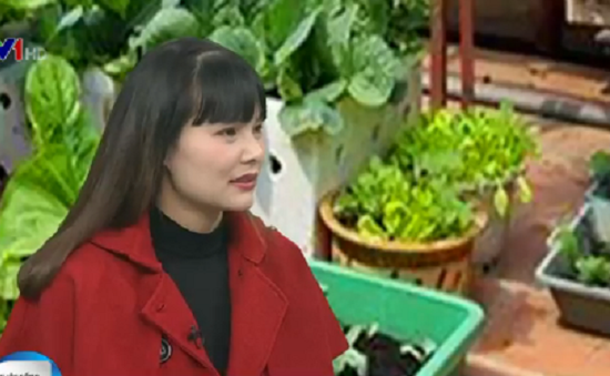 Gặp người phụ nữ thành thị đam mê trồng rau tại nhà