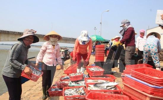Chốt phương án khai thác thủy sản miền Trung