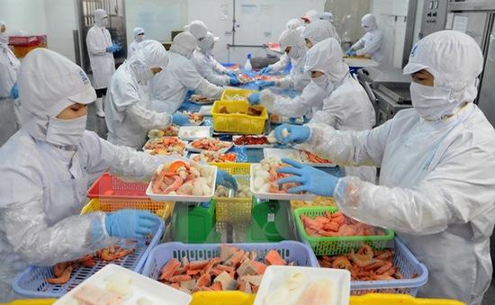 Làm rõ vụ DN không xuất khẩu cá điêu hồng sang Australia vẫn bị cảnh báo