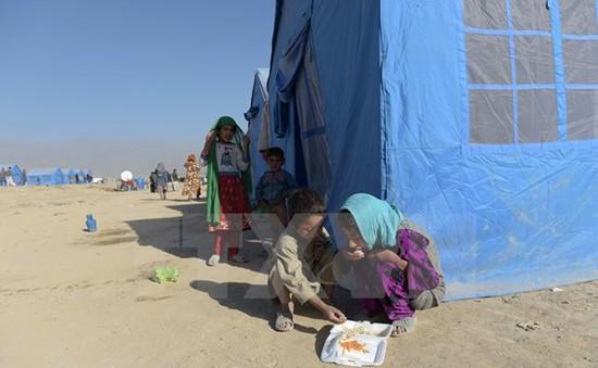 Chính phủ Afghanistan mất kiểm soát 2% lãnh thổ trong 3 tháng