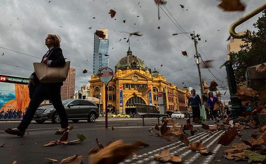 """Australia: """"Bão hen suyễn"""" làm hàng nghìn người nhập viện"""