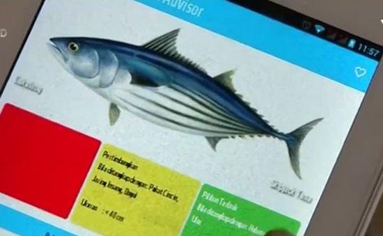 Ứng dụng điện thoại phân loại thủy hải sản quý hiếm
