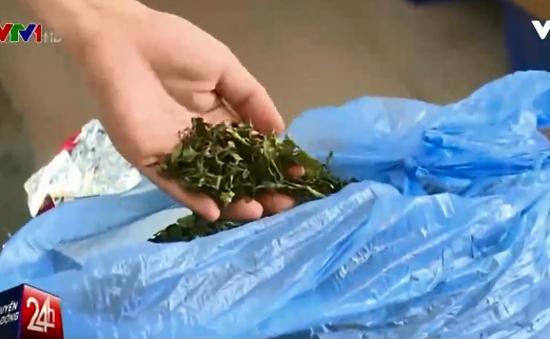 3 tấn lá khô chứa chất gây nghiện đột lốt trà sấy khô tại TP.HCM