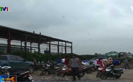 Hà Nội thu hồi hơn 12.000m2 đất nông nghiệp bị lấn chiếm
