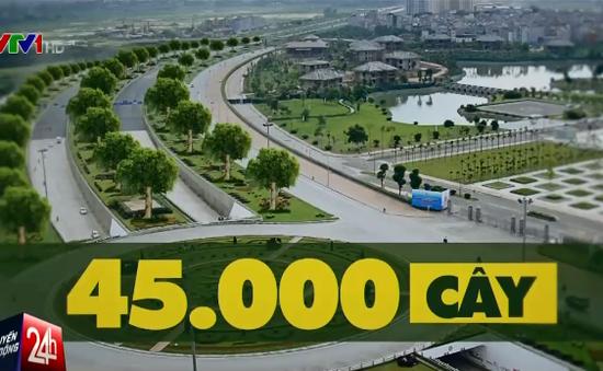Hà Nội: Sẽ trồng 45.000 cây bóng mát trên Đại lộ Thăng Long