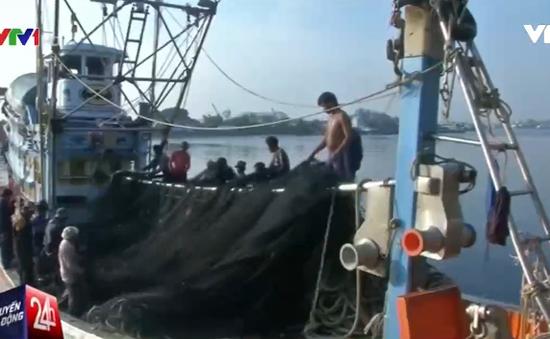 Ngành ngư nghiệp Thái Lan trước nguy cơ thua lỗ