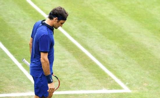 Bán kết Stuttgart mở rộng: Federer dừng bước