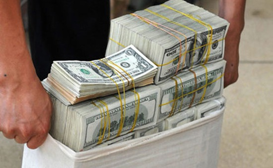 Ngân hàng Nhà nước mua vào ngoại tệ