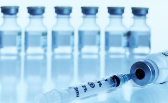 Brazil phát triển vaccine phòng sốt xuất huyết