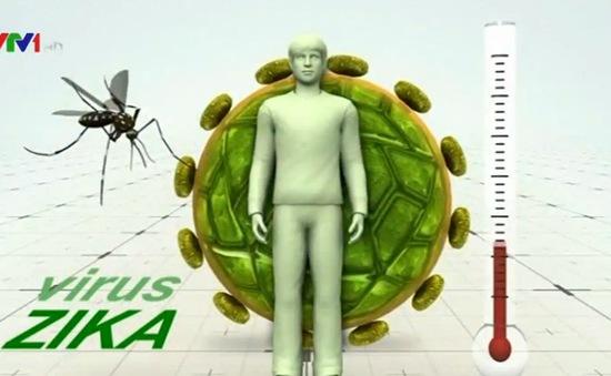 Bộ Y tế hành hướng dẫn chẩn đoán và điều trị bệnh do virus Zika