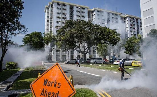 Lo ngại Zika, Bộ Giáo dục Malaysia hủy chuyến đi tới Singapore và Philippines