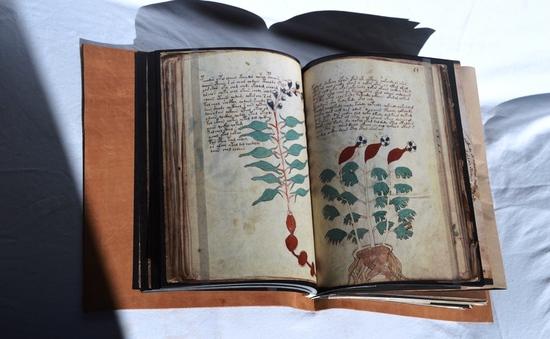 Bản thảo cuốn sách cổ bí ẩn nhất thế giới được xuất bản