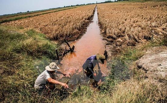 Cứu trợ khẩn 4 tỷ đồng cho người dân vùng hạn mặn