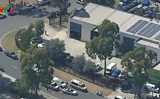 Xả súng gây thương vong tại Sydney, Australia