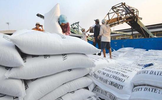 Điểm báo sáng 27/4: Giá gạo chỉ tăng do... ảo tưởng