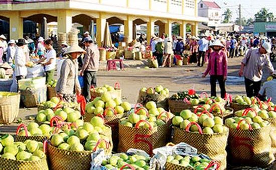 Xuất khẩu nông sản sang Trung Quốc: Tiểu ngạch hay chính ngạch?