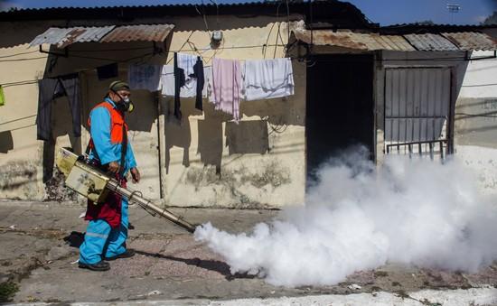 Tổng thống Mỹ yêu cầu đẩy nhanh nghiên cứu vaccine phòng ngừa virus Zika