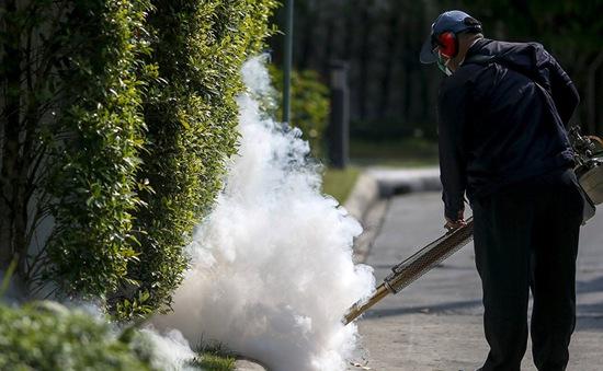 Thái Lan phát hiện 21 ca nhiễm Zika tại trung tâm thủ đô Bangkok