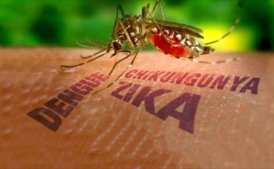 Brazil dỡ bỏ tình trạng khẩn cấp do virus Zika