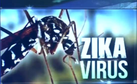 TP.HCM công bố hết dịch Zika