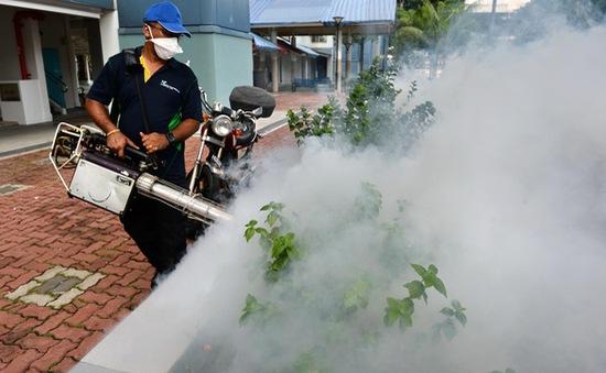 Dịch virus Zika diễn biến phức tạp tại khu vực Đông Nam Á