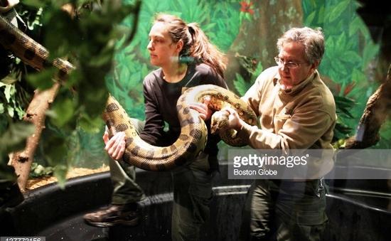 Nhân viên sở thú - Nghề thú vị nhưng đầy rủi ro