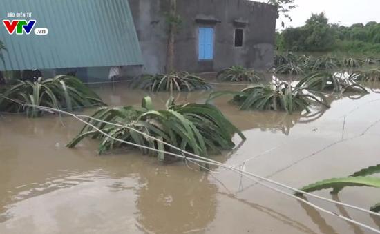 Bình Thuận: Khẩn trương khắc phục thiệt hại do mưa lũ tại huyện Hàm Thuận Nam