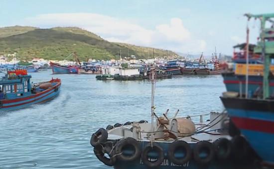 Các địa phương quyết liệt ngăn chặn nạn khai thác hải sản bất hợp pháp