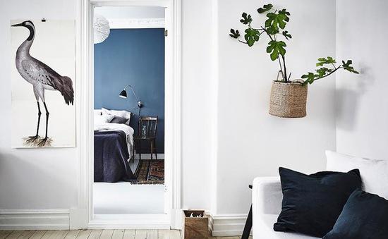 Trang trí tường nhà vừa ấn tượng vừa tiện dụng trong không gian nhỏ