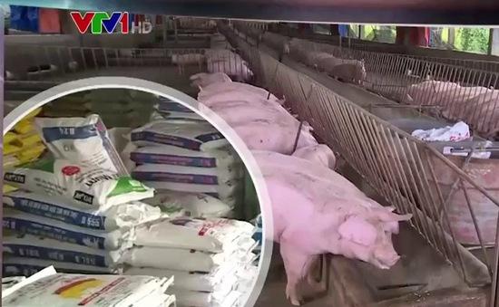 Tăng mức xử phạt chất cấm trong chăn nuôi: Đã đủ sức răn đe?