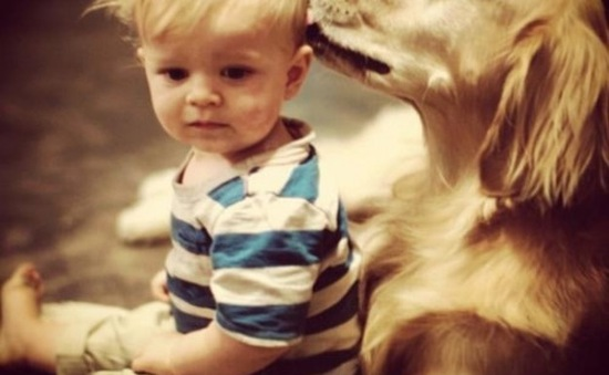 """""""Tan chảy"""" với những hình ảnh đáng yêu của trẻ em và thú cưng"""
